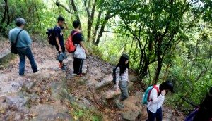 The group hiked along the Wu Kau Tang trails, and observed the natural environment of the area. 師生沿烏蛟騰行山徑遠足,沿途互相扶持,同時體會區內的自然環境。