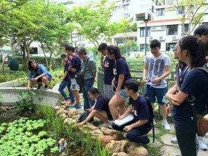 The EdUHK team introducing different types of plants and the ecosystem facilities in the eco-garden to SHEAC delegation. 香港教育大學的團隊向書院導師和同學們介紹生態園的各種植物和生態系統設施。